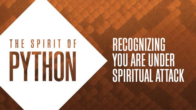 Python Spirit 2